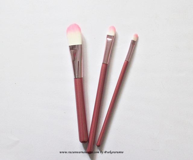 Foundation Brush Pink Set
