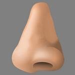 nose in spanish