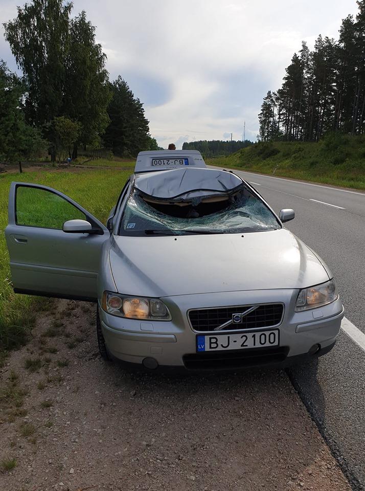 Auto pēc sadursmes ar alni