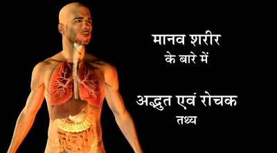 Amazing-Facts-of-Human-Body-in-Hindi