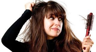 cara merawat rambut rontok,cara merawat rambut rontok dan kering secara alami,cara mengatasi rambut rontok parah,cara merawat rambut,cara merawat rambut rontok dan bercabang,cara merawat rambut rontok dan berketombe,cara merawat rambut rontok dan kering,cara merawat rambut rontok dengan bahan alami,cara merawat rambut rontok dengan lidah buaya,cara merawat rambut rontok secara alami