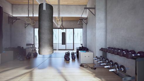 Tedge Gym