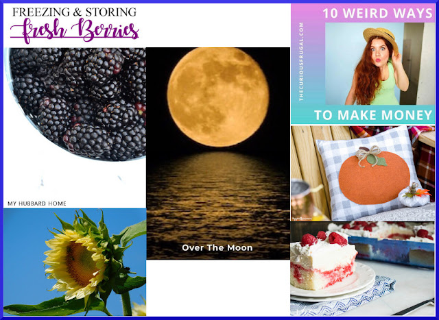 Over The Moon Linky Party. Share NOW. 2 hostesses - 5 features. #linkyparty #OTM #eclecticredbarn  #marilynstreats#overthemoon