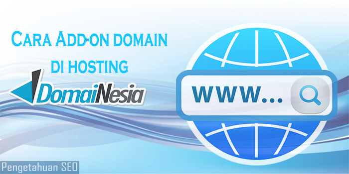 cara add on domain di hosting domainesia