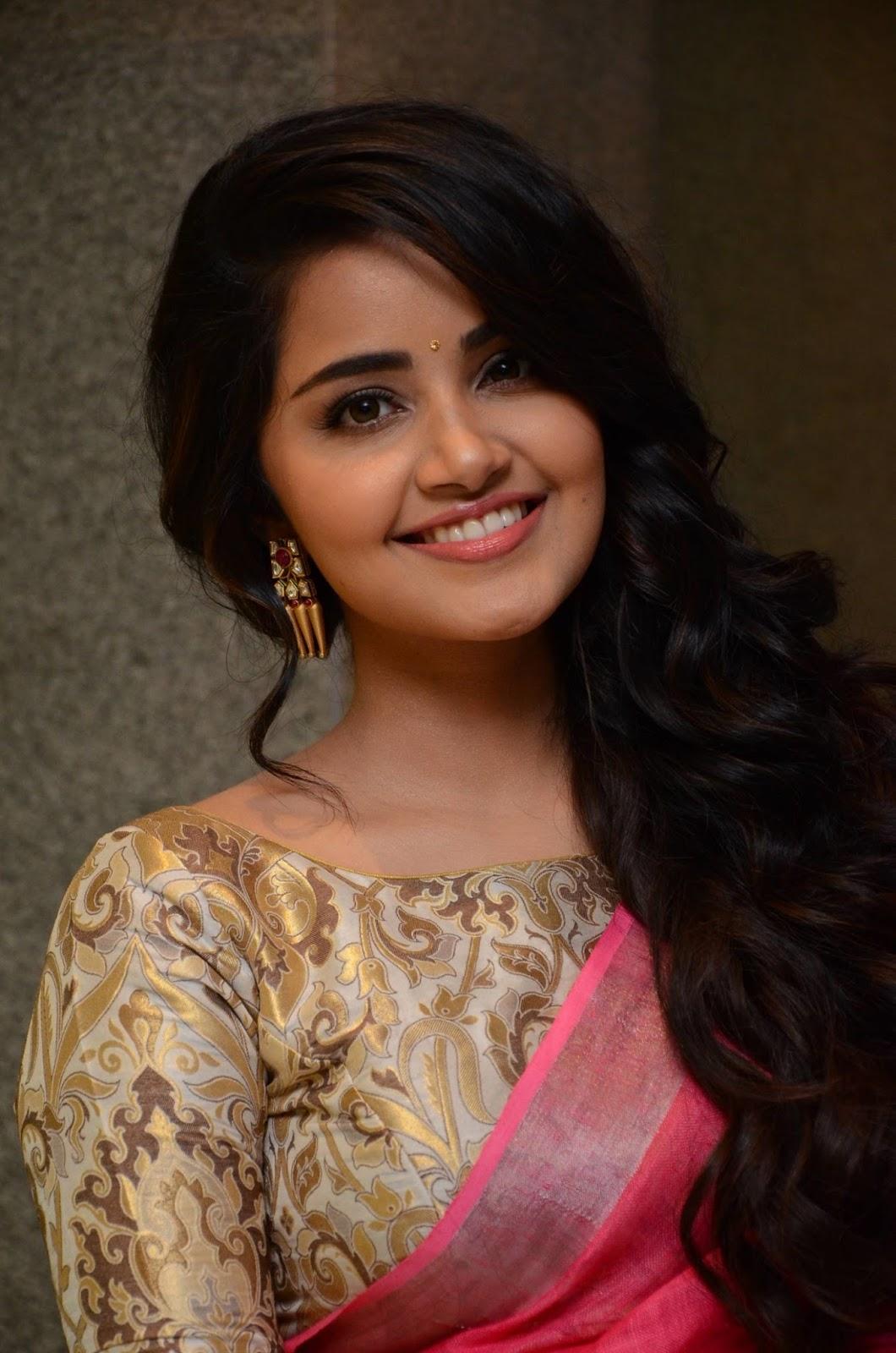 Anupama Parameswaran Pink Saree Photos At Vunnadi Okate -3838
