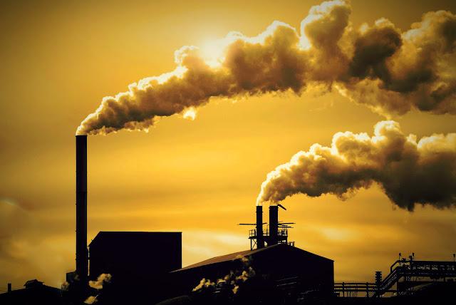 Thực trạng ô nhiễm môi trường như hiện nay rất có hại cho lá gan