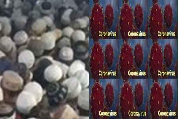 palwal-corona-virus-16-positive-cases-from-nizamuddin-markaj-news
