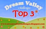 Dream Valley Challenge Top 3