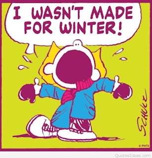 i-wasnt-made-for-winter-funny-quotes