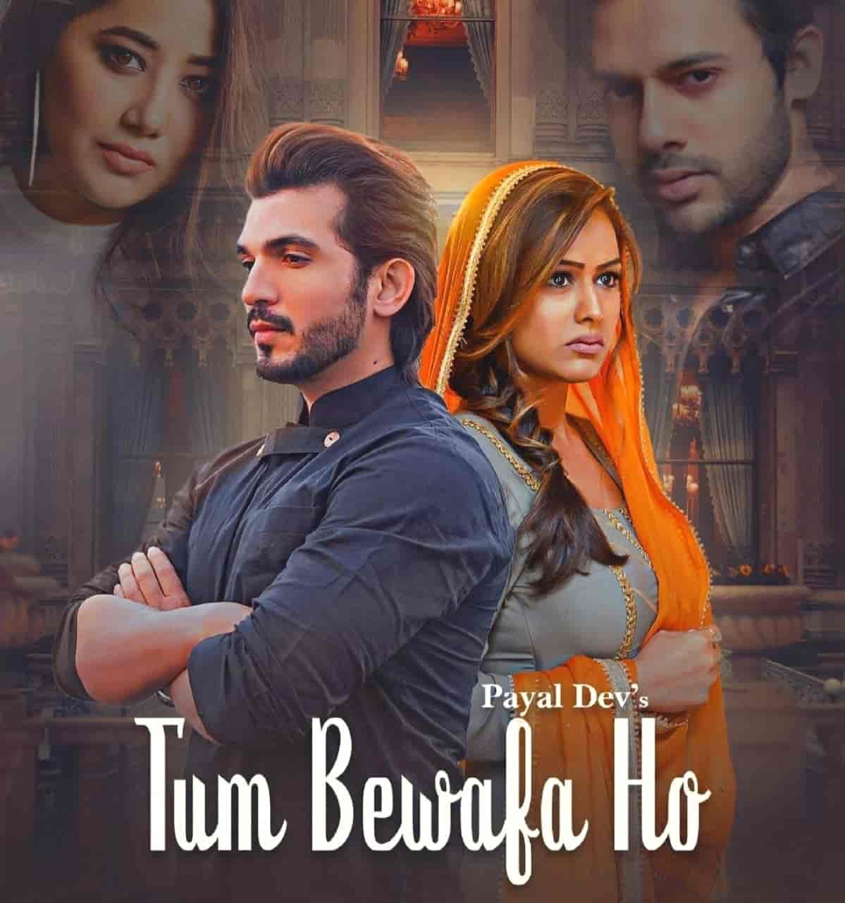 Tum Bewafa Ho Hindi Song Lyrics Payal Dev & Stebin Ben