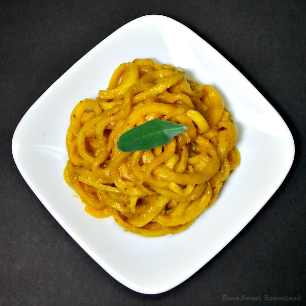 Veggies First, Then Dessert - Butternut Squash Noodles with Pumpkin Sage Sauce
