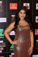 Bollywood Celebrities on the Red Carpet Of Zee Cine Awards 2017 Exclusive 018.JPG