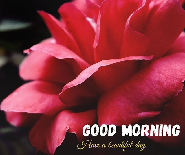 good morning with flower images