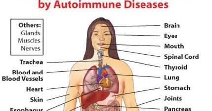 Maciocia Online: THE TREATMENT OF AUTOIMMUNE DISEASES WITH