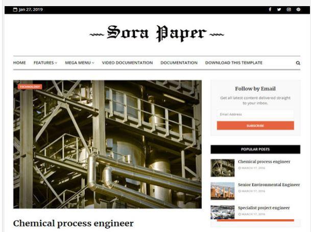 Blogger Sora Paper