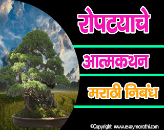 vruksharopanat lavlelya ropatyache atmavrutta essay in marathi