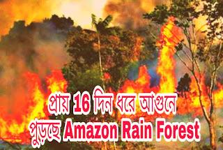 প্রায় 16 দিন ধরে আগুনে পুড়ছে Amazon Rain Forest
