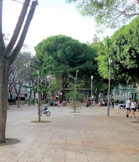 Benvenuti nuovi Ginkgo di piazza Giovanni