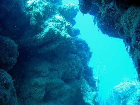 Great blue hole belize diving confirm