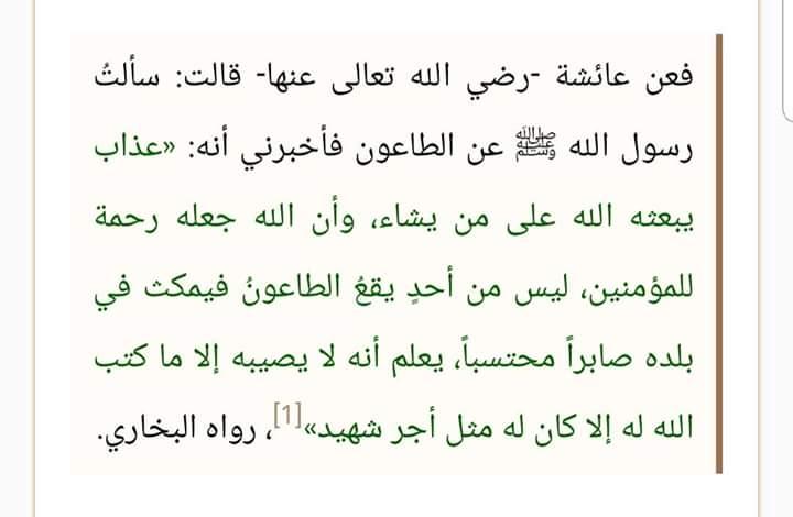 Banyak yang Gagal Paham Soal Corona, Ustadz Abdul Somad: Wabah itu Azab