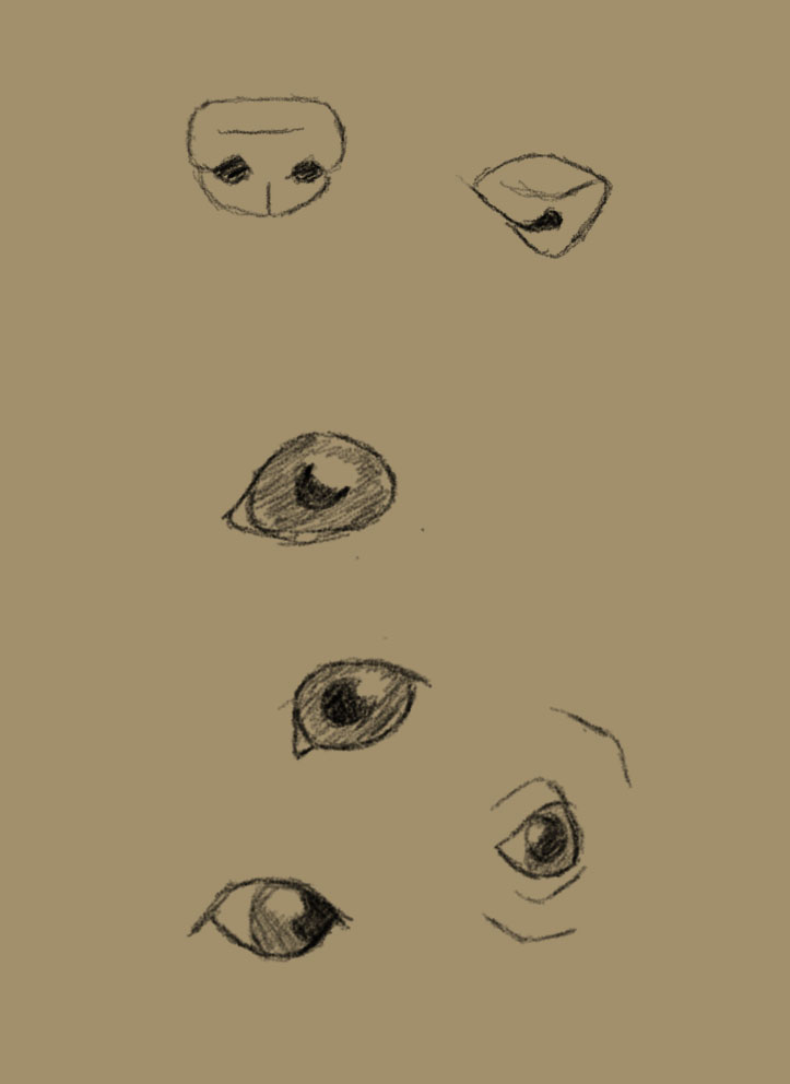 It is a graphic of Dashing Dog Eyes Drawing