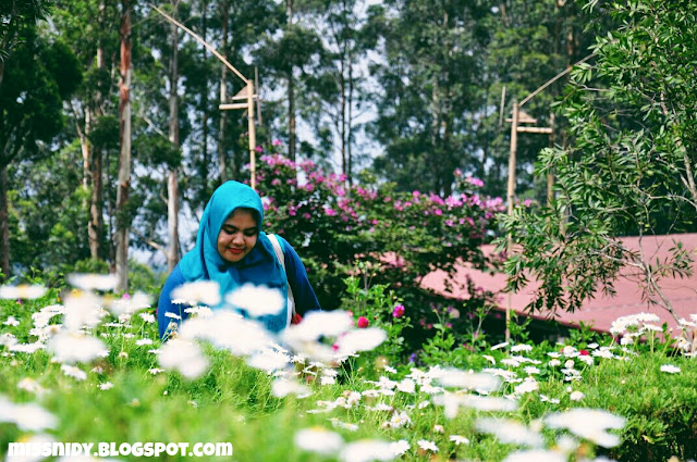 taman bunga di dusun bambu lembang