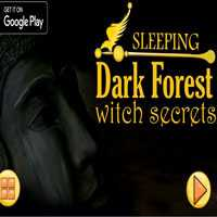 NsrGames Sleeping Dark Fo…