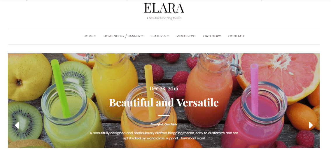 Elara Wordpress themes free download