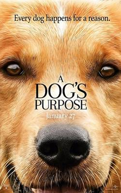 A Dog Purpose (2017) HD-Cam 720p