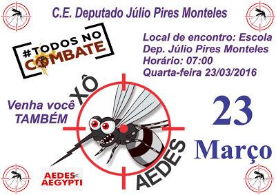 Prefeitura de Anapurus e Escola Deputado Júlio Pires Monteles, farão um mutirão contra o Aedes Aegypti.