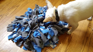 Image: Snuffle Mat © Catherine Watt of PupVacay.com - All rights reserved