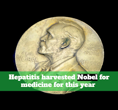 Hepatitis harvested Nobel for medicine for this year