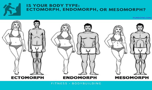 Is-Your-Body-Type-Ectomorph-Endomorph-or-Mesomorph