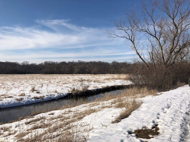Spring Brook winds throughout Meacham Grove Nature Preserve.