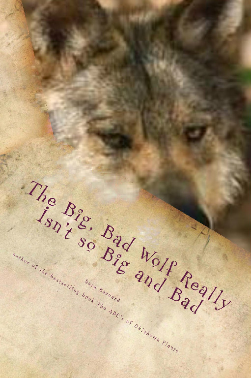 The Big Bad Wolf Really Isn't so Big and Bad