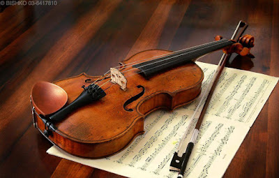 Violin Classes in Nagpur is Available for all