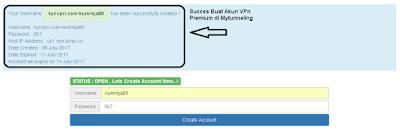 Succes Buat Akun VPN Premium