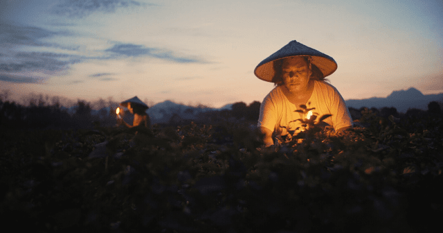 Quing Lalam Ning Aldo Reeden Fajardo Cinemalaya 2020