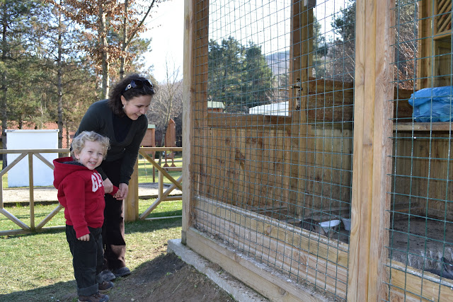 Tavşan kafesinin yanında, Güral Sapanca Wellness Park, Sapanca