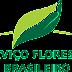 Serviço Florestal Brasileiro lança boletins do SNIF