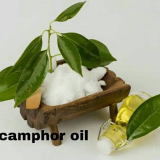 9 Benefits of Camphor Oil for Health and Natural Beauty Treatments