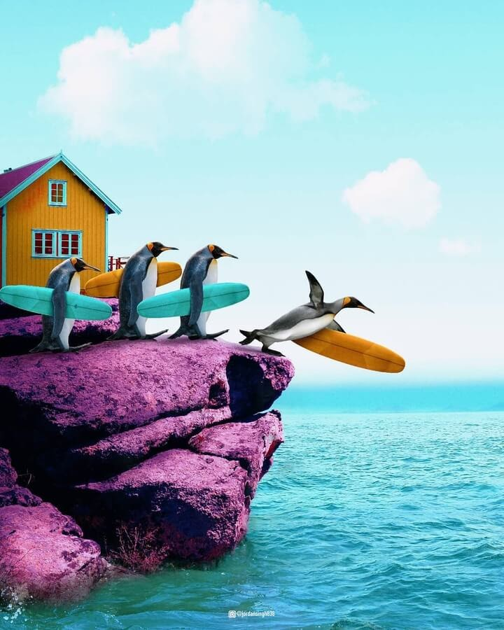 01-Surfing-penguins-Jordan-Singh-www-designstack-co