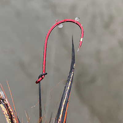 Steelhead scales, DNA. One of several that got away.
