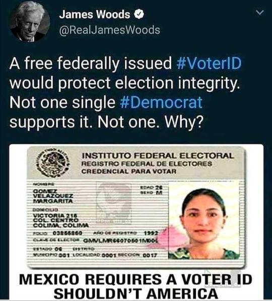 ELECTIONS%2B%25282%2529.jpg