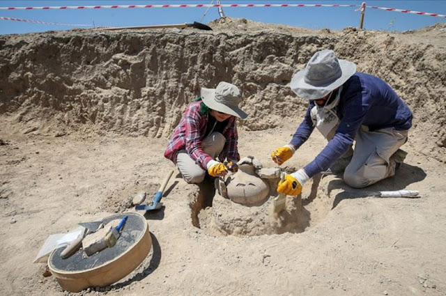 Burial site of Urartian nobles unearthed in eastern Turkey's Van