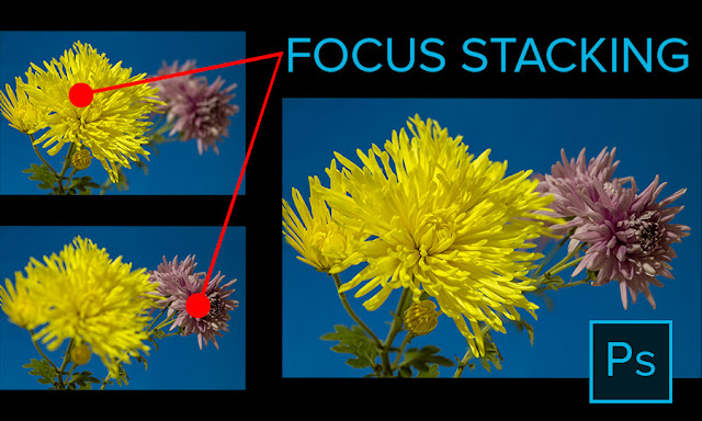 Focus Stacking for Greater Depth of Field in Adobe Photoshop