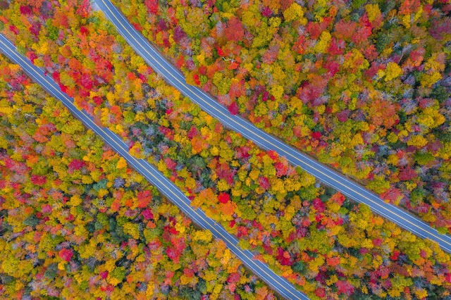 The fall scenery of red brightly throughout the United States