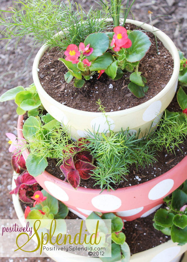Polka-Dotted Tiered Planters - Positively Splendid {Crafts, Sewing on