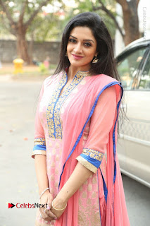 Actress Vimala Raman Stills in Beautiful Pink Salwar Kameez at (ONV) Om Namo Venkatesaya Press Meet  0234.JPG