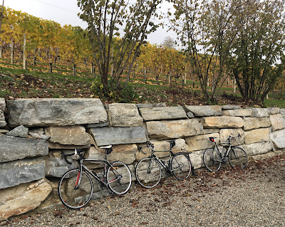 carbon road bike rental in Barolo Piedmont